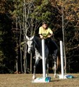 Mom borrows her daughter's horse & tries her hand at closing the gate in the trail class.